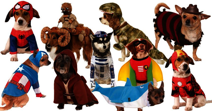 Top-10-Dog-Halloween-Costumes-2016