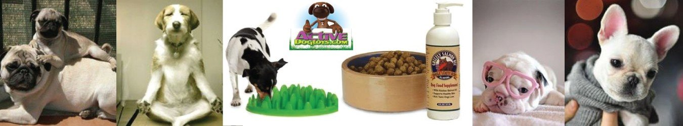 Active Dog Toys